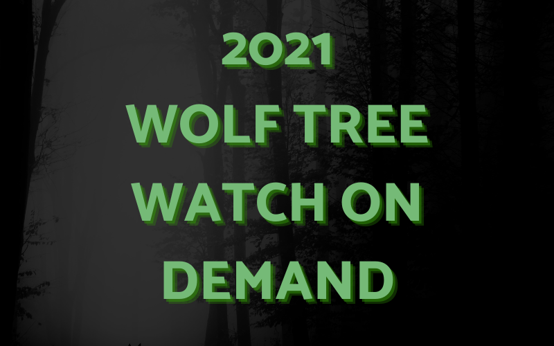 Wolf Tree Watch on Demand